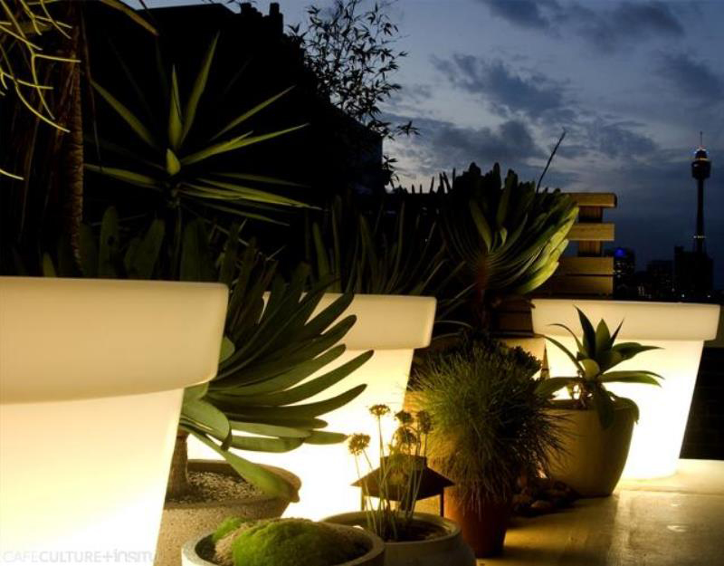 Bloom Pot Light